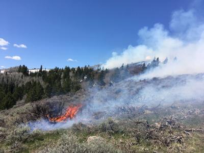 Red Creek burn