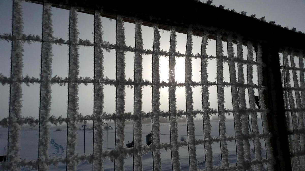 Fence Frost