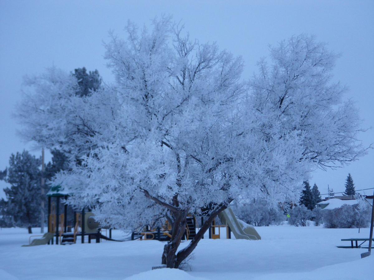 Playground Frost