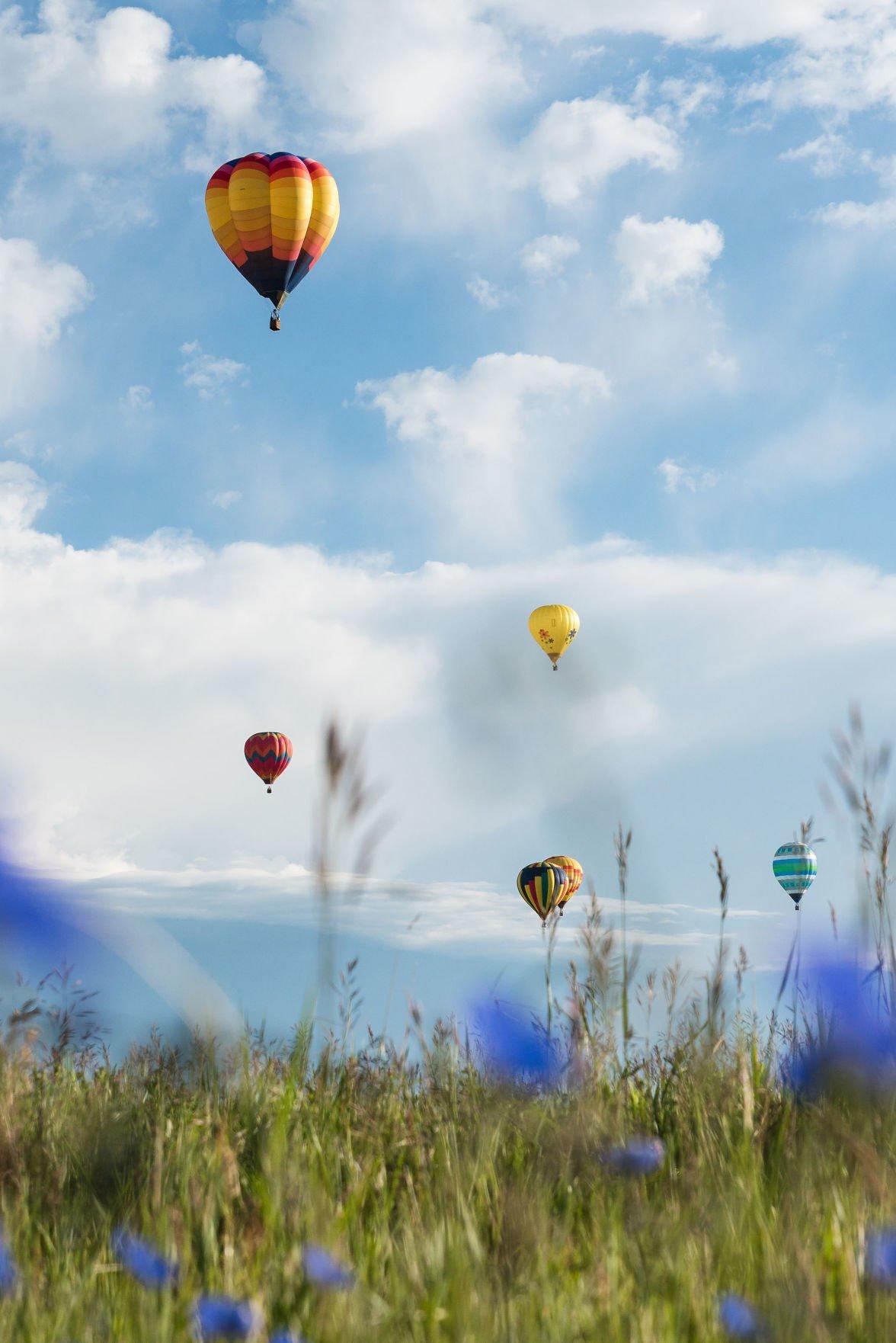 Balloon-Rally-2020-83.jpg