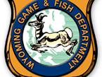 Game and Fish puts problem bear down in Darby Canyon