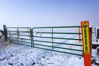 felt gate.jpg
