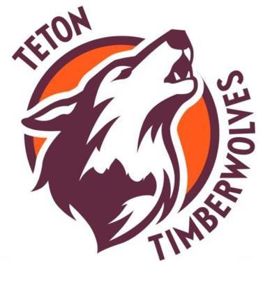 timberwolves logo.jpg