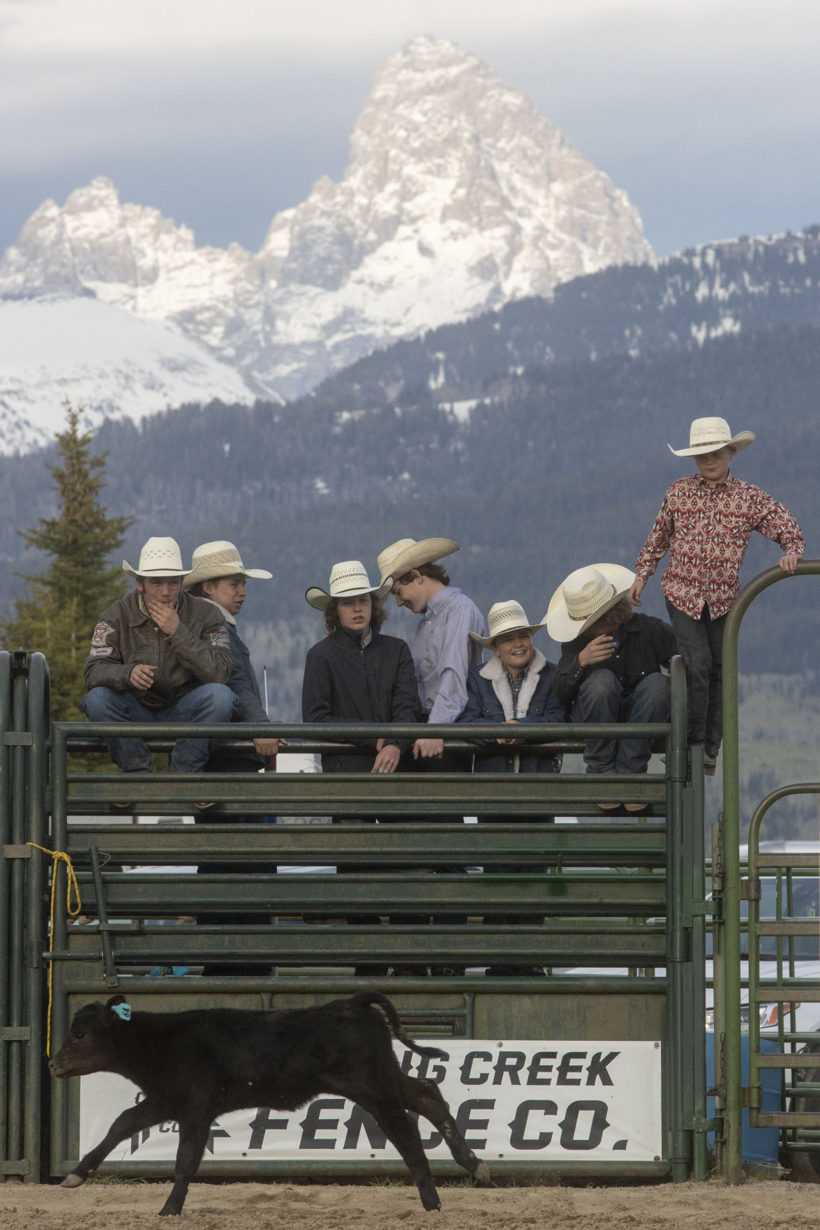 High School Rodeo in Driggs