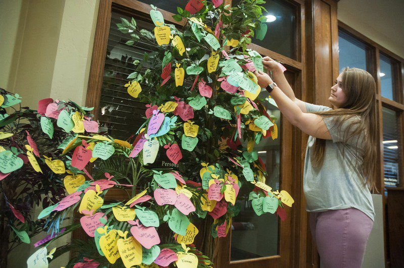 Vision Bank 'Teacher Trees' help stock local classrooms