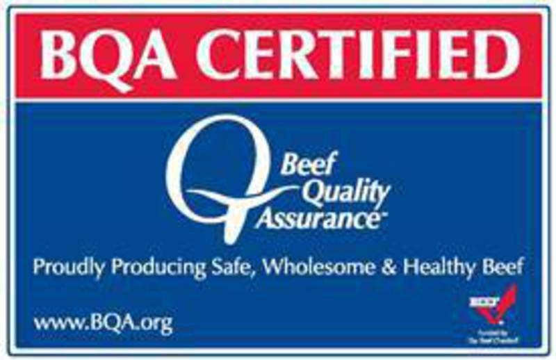 bqa producers cattle certified study shows premium theadanews