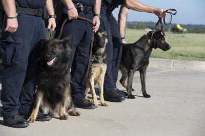 Chickasaw canine companions protect and serve