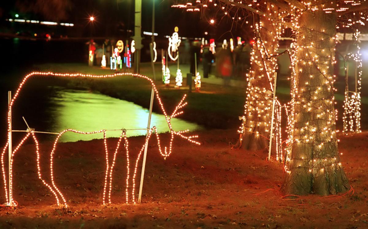 11-21 Lights in WSP 2 C.jpg