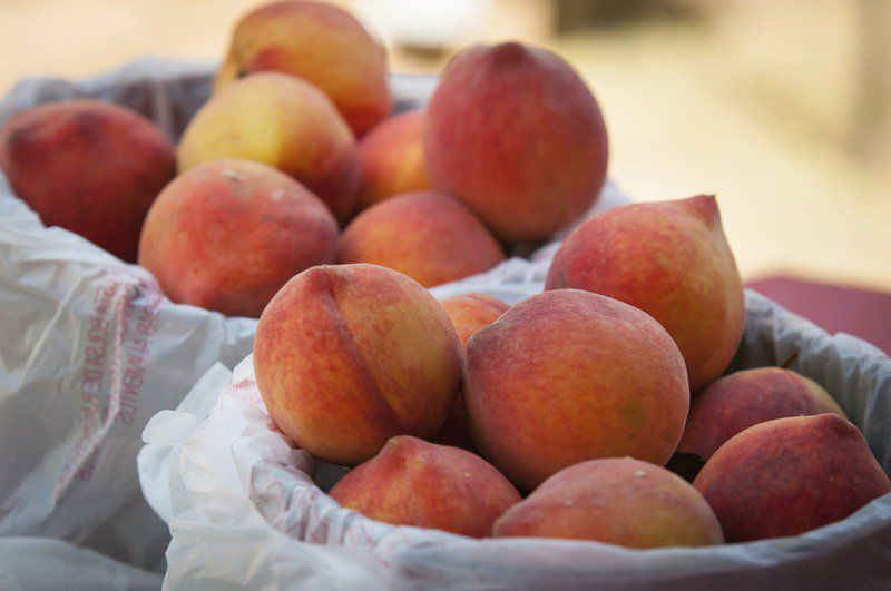 Peach Festival coming Saturday