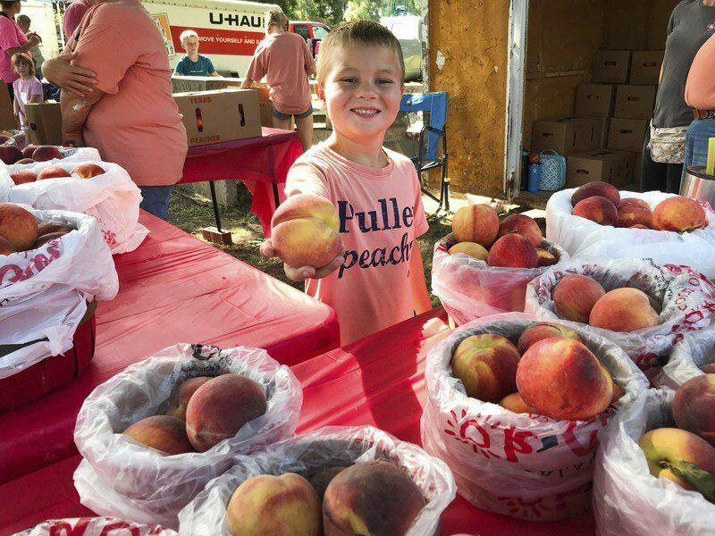 In picture: the 2021 Stratford Peach Festival