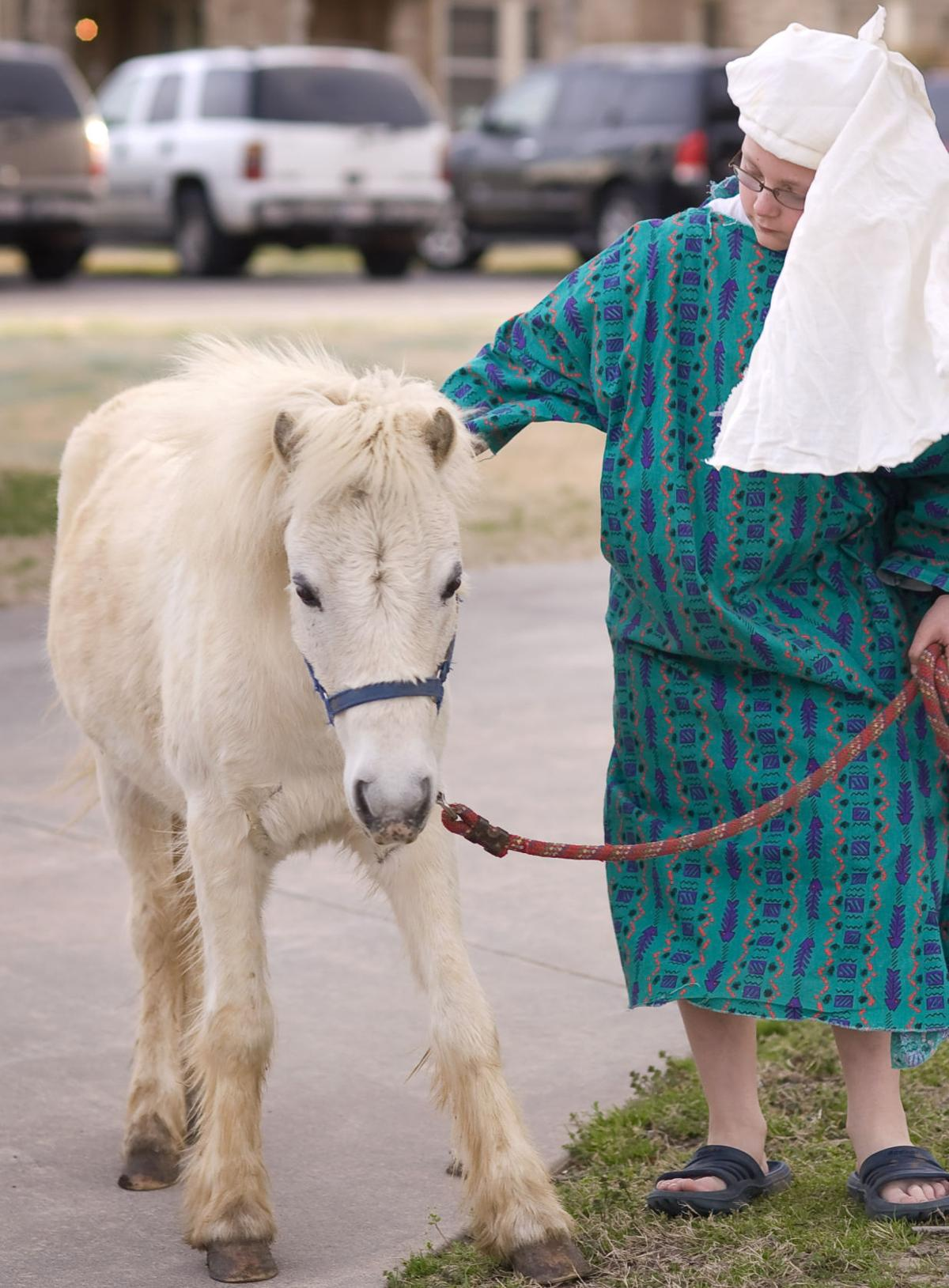 Boy and Easter Pony C.jpg