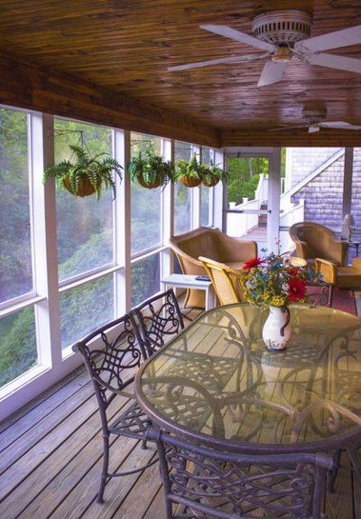 Indoor plants are natural air filters