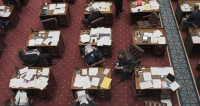 More women reach for the legislature. What are their chances in November?
