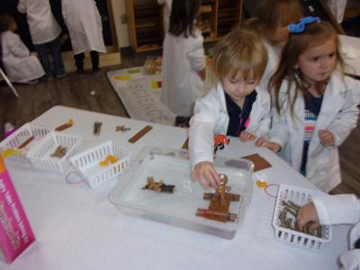 Students use literacy to support STEM learning