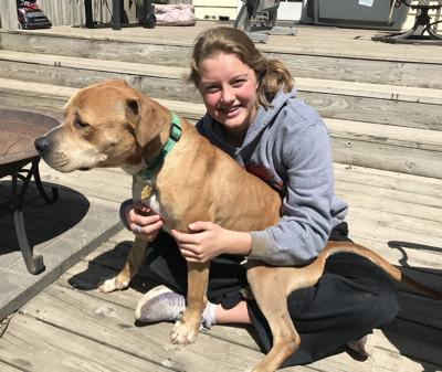 Glynn County Shelter Dog Makes 1 300 Mile Trip To New Home In Iowa Local News The Brunswick News