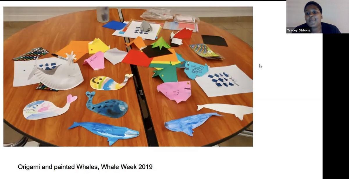 Whale Week