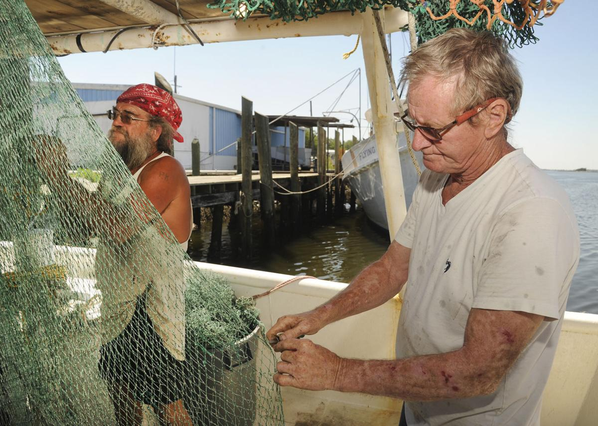 Sharks not a blessing to shrimp fleet | Local News | The Brunswick News