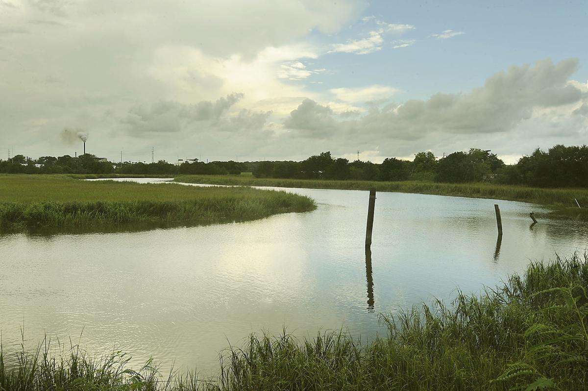 Terry Creek