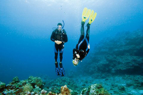 Island Dive Center