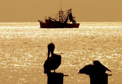 122317_shrimpboat