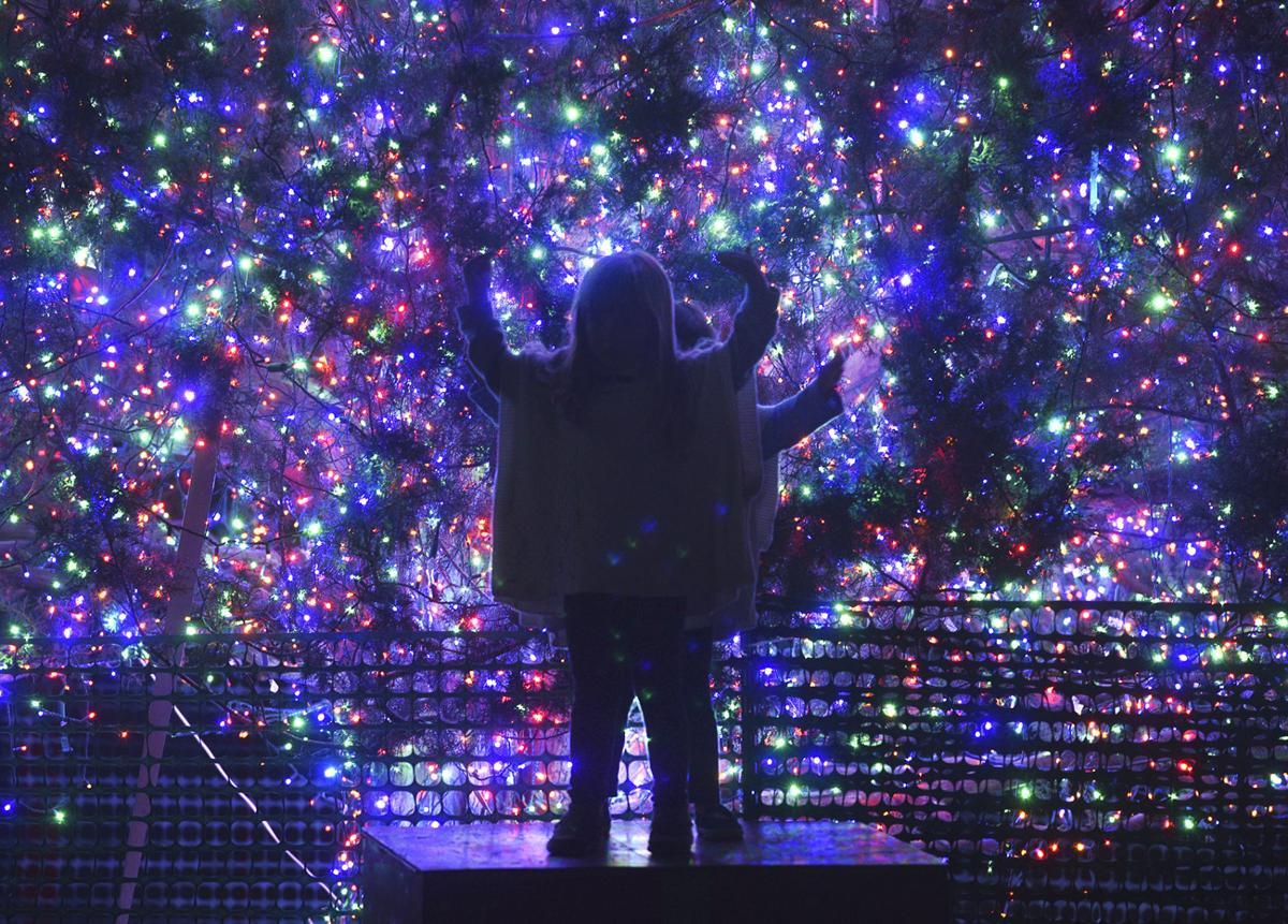 122317_jekyll lights 4