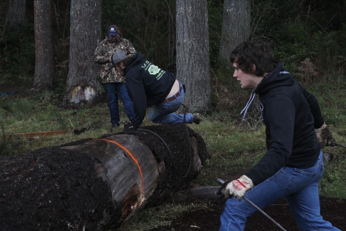 Forestry Skills Day