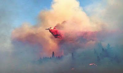 Wildfire Prevention Efforts