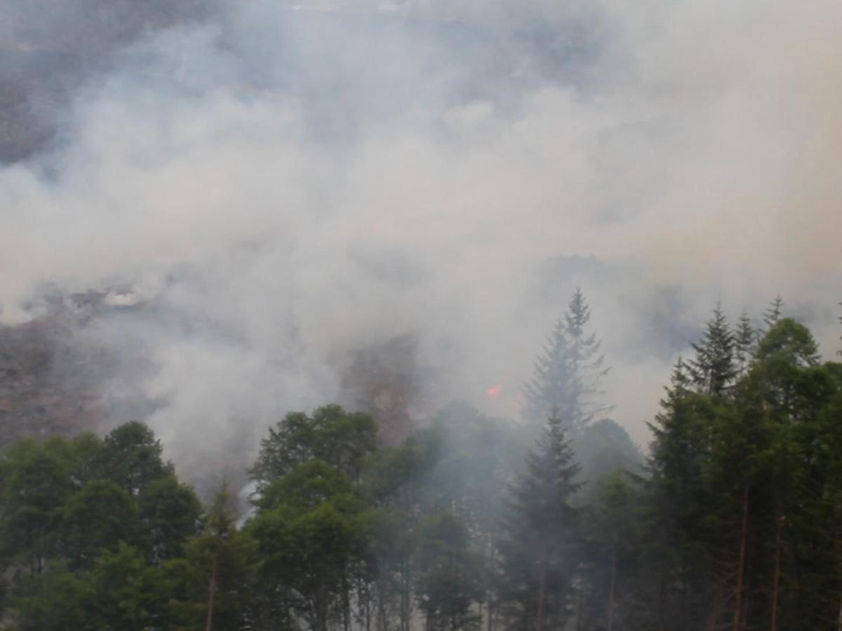 Chapman Road Fire