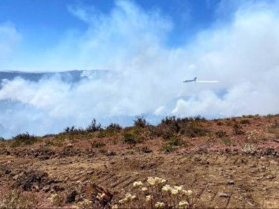 Warm Springs Reservation Wildfire