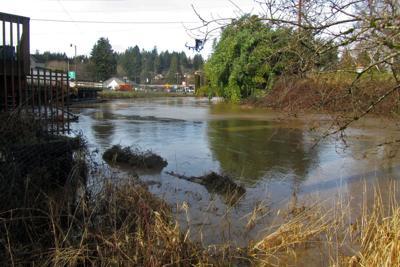 Clatskanie River.tif