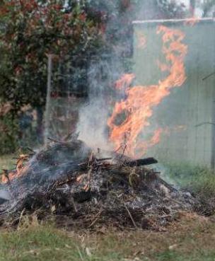 Fall Burning