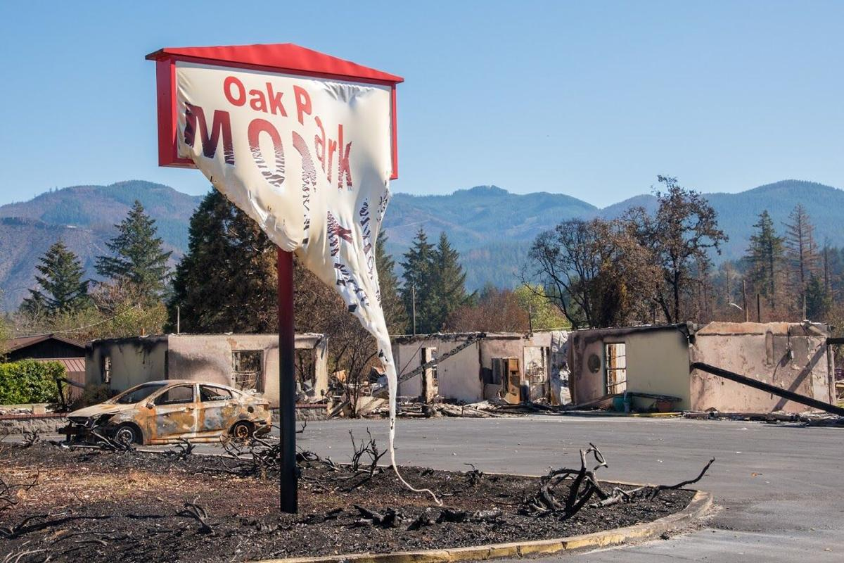 Wildfire Aftermath