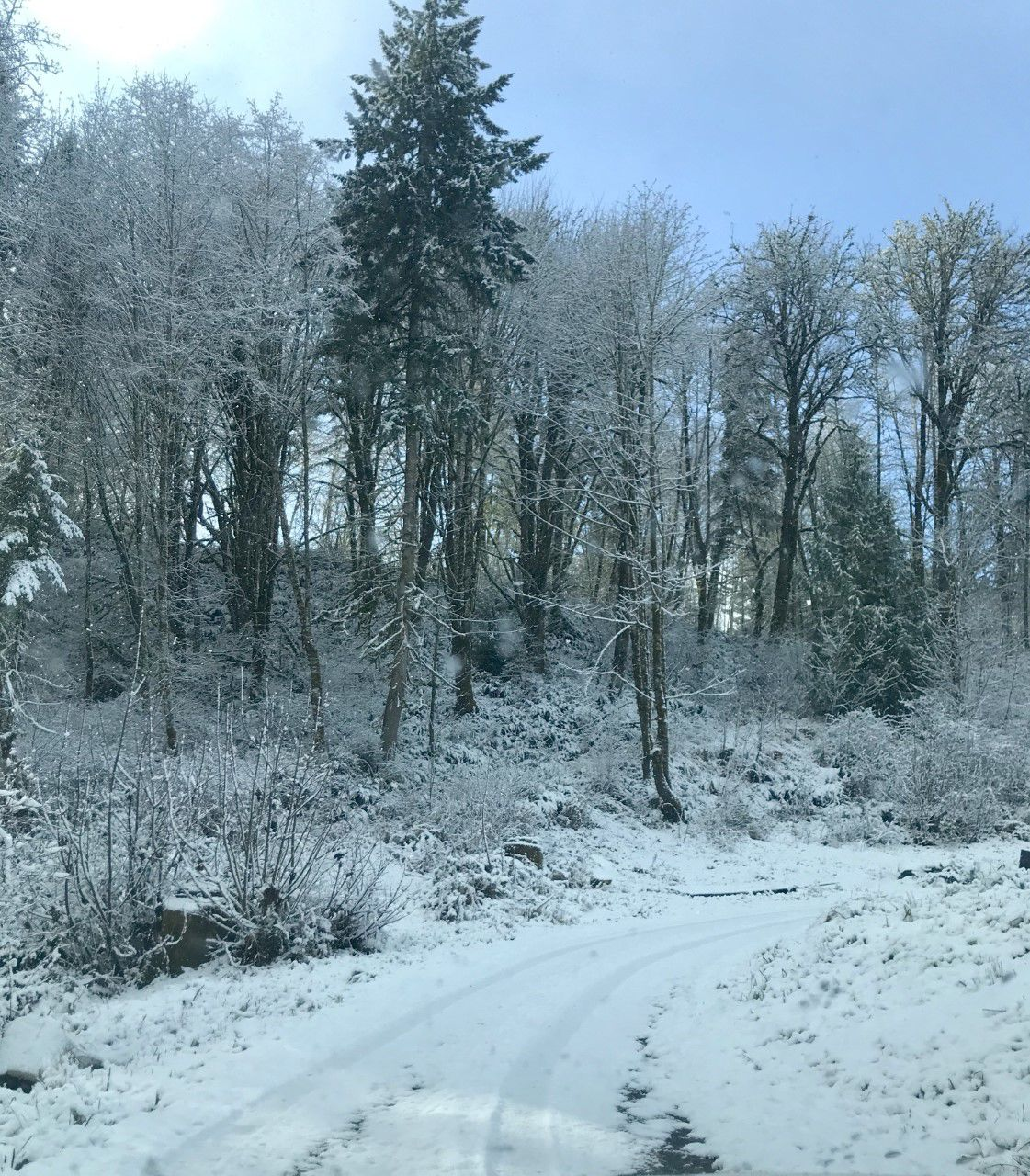 Deer Island Snow