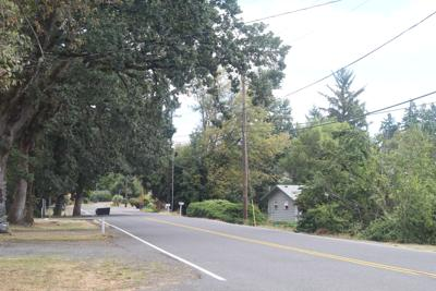 Vernonia Sidewalk