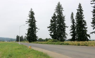 PCC in Scappoose