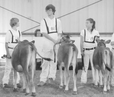 Local 4-H members earn high honors at district dairy show
