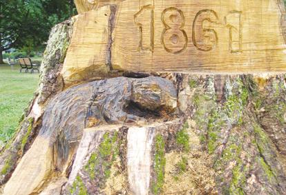 Finishing touches enhance, protect park tree carving
