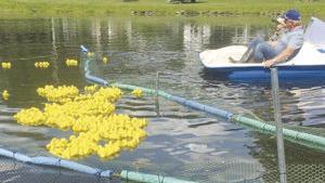 2018 Duck race