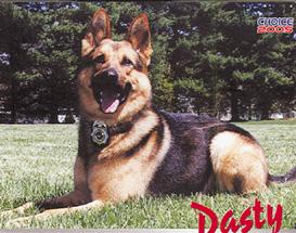 Dasty, Corry's former K-9, dies at 12