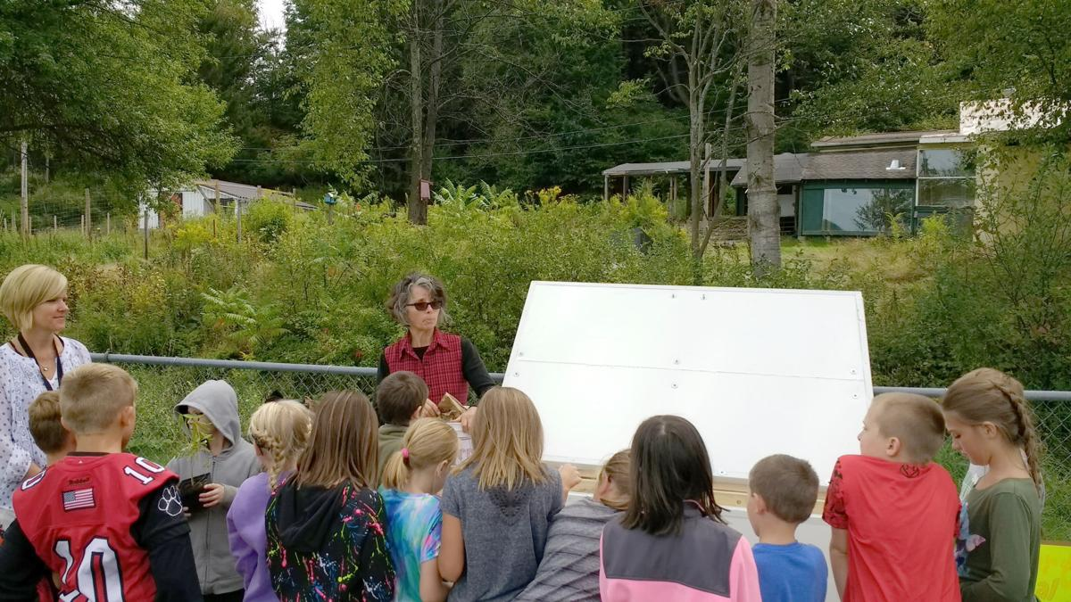 Teaching about composting