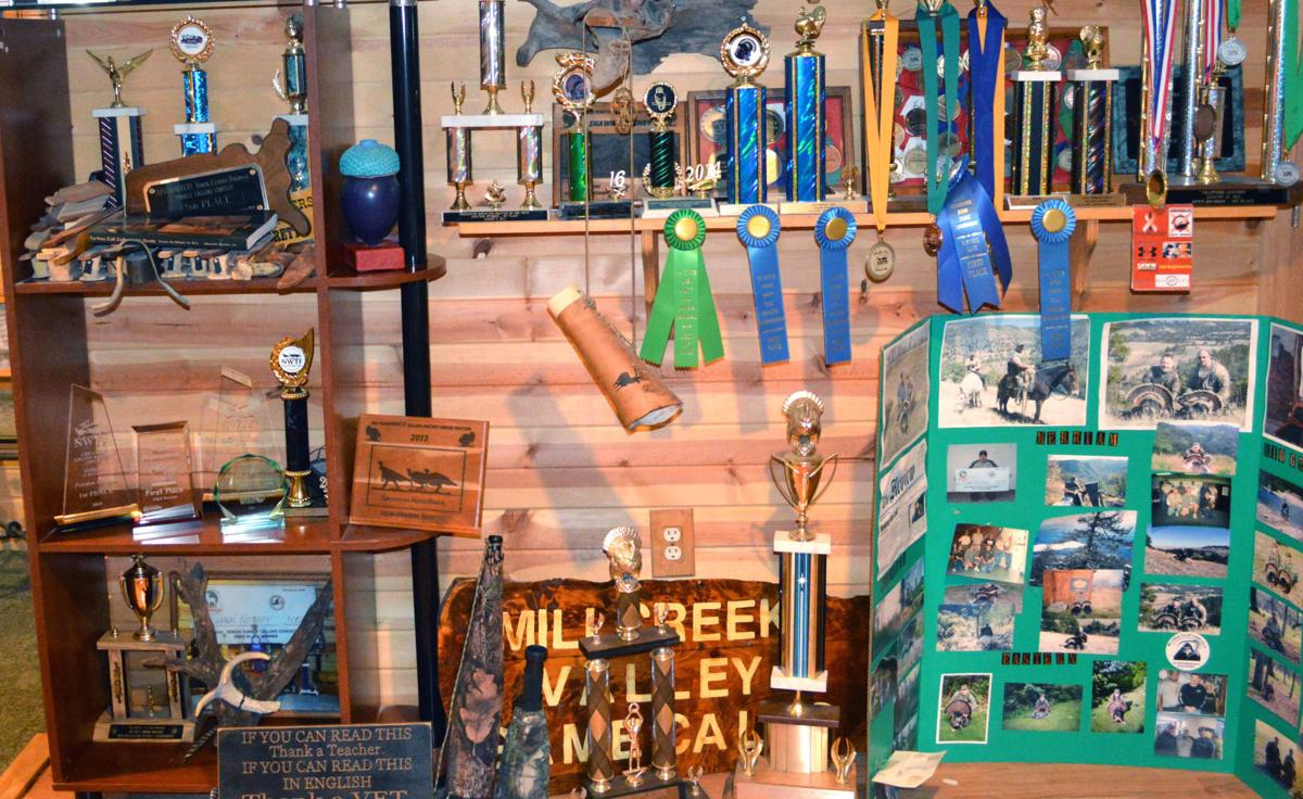 Trophies and ribbons galore