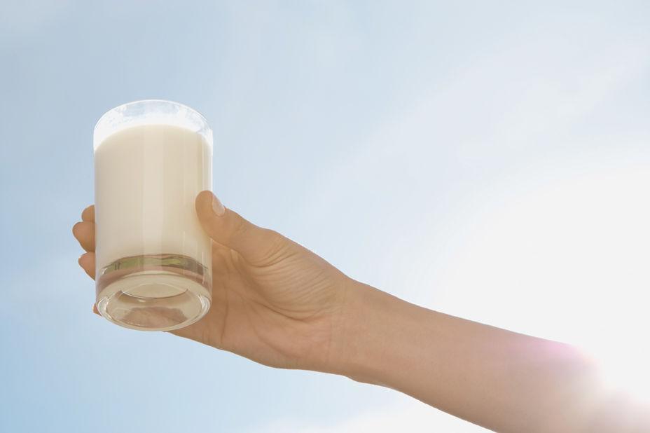 CNS Dairy 2