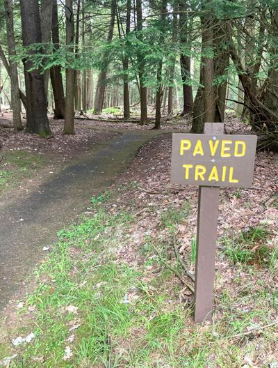 Cook Forest Trail
