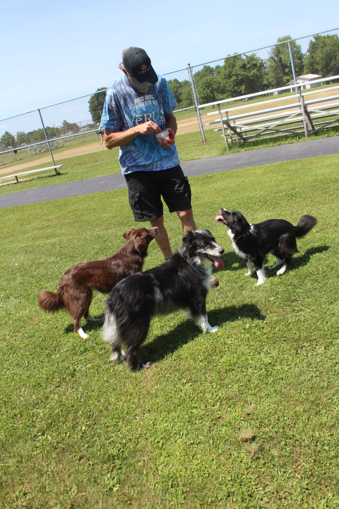 Gosch with dogs