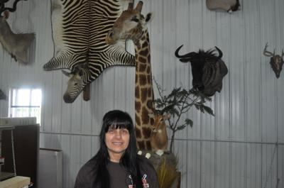 Beverly Rugh giraffe