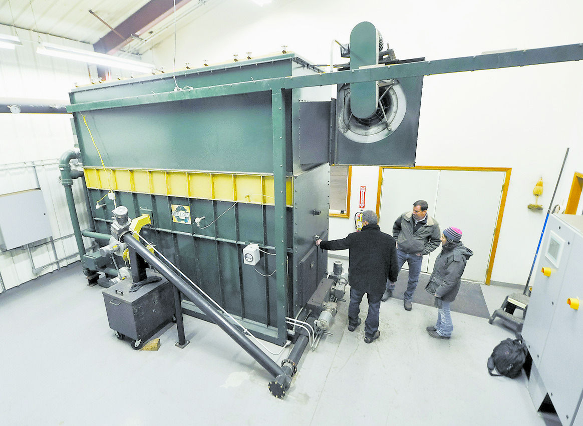 Biomass furnace