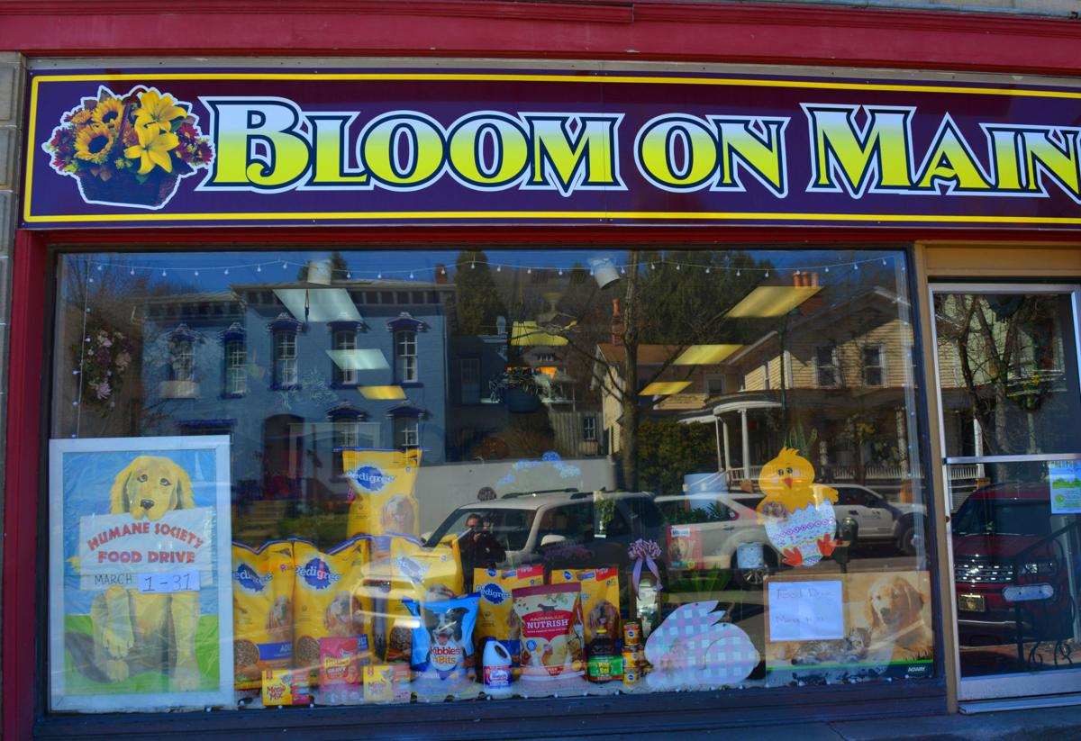 Bloom on Main front
