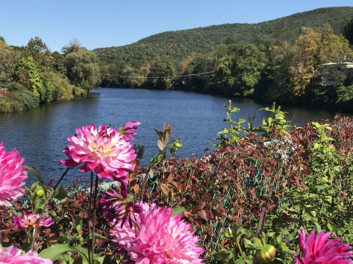 A view from The Bridge of Flowers of the Deerfield River
