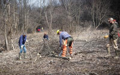 Habitat Work Days coming to Warren Township game lands