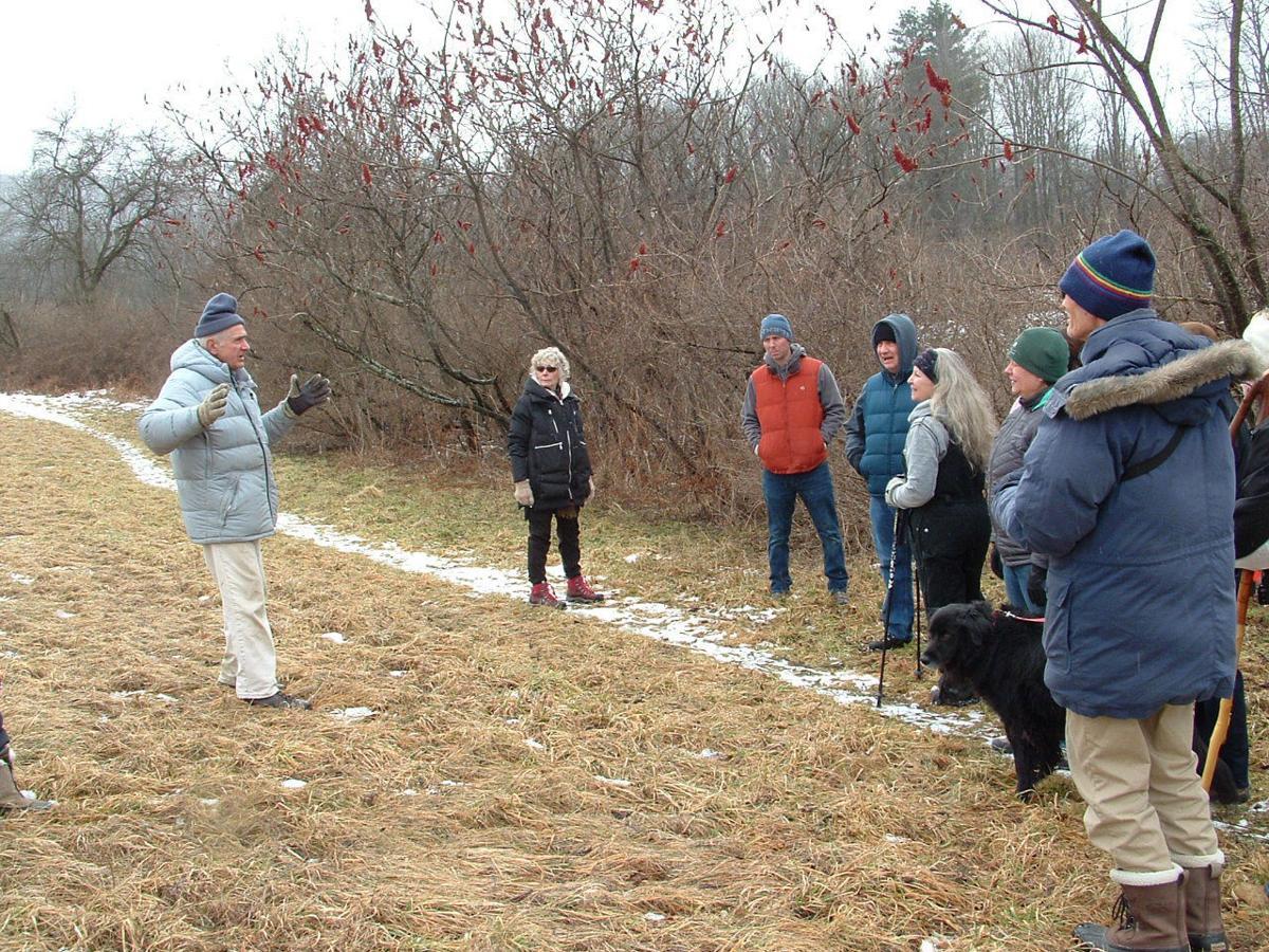 Carantouan Greenway holds wetlands and woodland hike